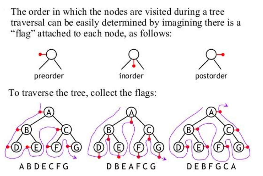 Binary tree - Computer Science Wiki